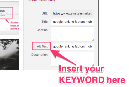 google ranking factors alt text